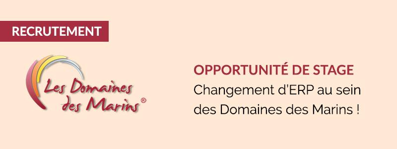 Opportunité de stage : Changement d'ERP au sein des Domaines des Marins !
